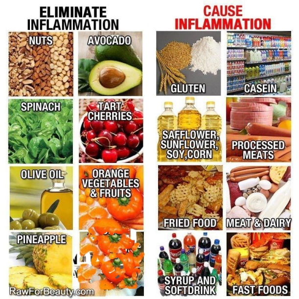 anti inflamasi