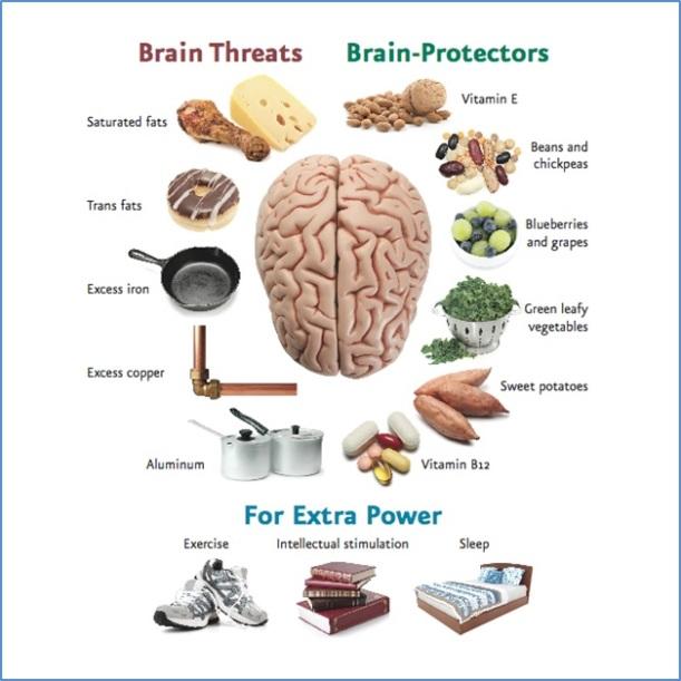 Infographic-Brain-Threats-Protectors