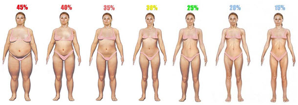 body-fat-percentage-women-1